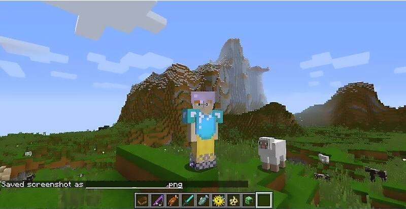 Screenshot in Minecraft