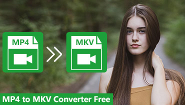 Gratis MP4 til MKV Converter