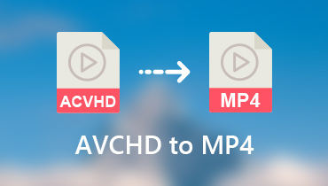 Konvertieren Sie AVCHD in MP4