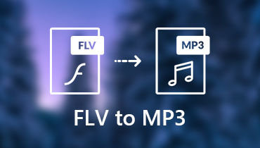 Ubah FLV ke MP3