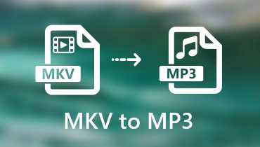 Konvertieren Sie MKV in MP3
