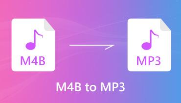 Convert M4B to MP3