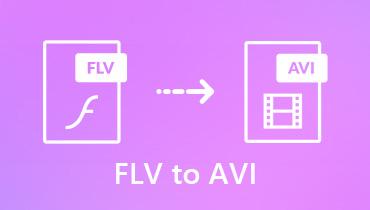 Convertiți FLV în AVI