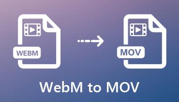 Konvertálja a WebM-et MOV-ba