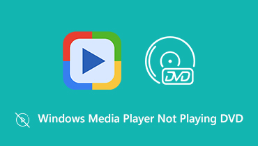 Windows Media Player가 DVD를 재생하지 않음