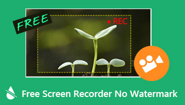 Free Screen Recorder No Watermark