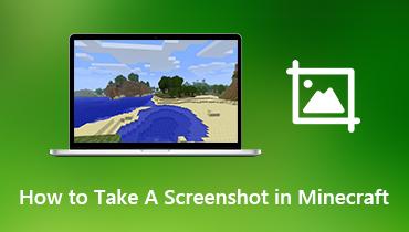 Cum să faceți o captură de ecran în Minecraft
