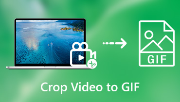 Recortar video a GIF