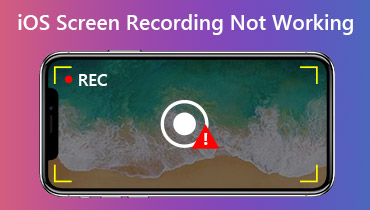 iOS Screen Recording Not Working
